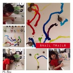 Inquiry: Snail trails.