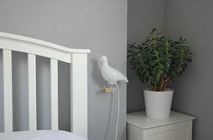 Ed carpenter pigeon light