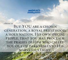 You are chosen! #ScripturePicture