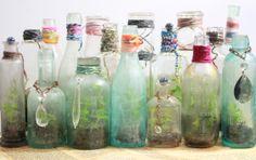 terrariums in vintage bottles from the slug & the squirrel boho