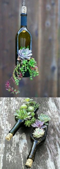 Upcycle Wine Bottles into these fantastic Succulent Planters. We've also included how to cut glass bottles, Beer Bottle Herb Planters and Bird Cage Succulent Pl bottle crafts Wine Bottle Succulent Planter Easy Diy Video Tutorial Wine Bottle Planter, Wine Bottle Art, Wine Bottle Crafts, Wine Bottle Garden, Bottle Lamps, Bottle Bottle, Wine Bottle Cutting, Cut Wine Bottles, Recycle Wine Bottles