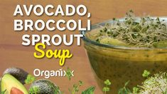 """Enjoy this delicious cancer-fighting Avocado Broccoli Sprout Soup. So easy! - ✅WATCH VIDEO👉 http://alternativecancer.solutions/enjoy-this-delicious-cancer-fighting-avocado-broccoli-sprout-soup-so-easy/     Who does not like the delicious and creamy taste of avocados? Especially when they are full of vitamin E that helps balance cholesterol and helps you meet all the """"good fats"""" your body needs to stay healthy. And now you can enjoy avocados in a new soup reci"""