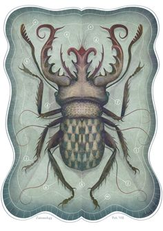 ENTOMOLOGY Vol. II by V L A D I M I R , via Behance