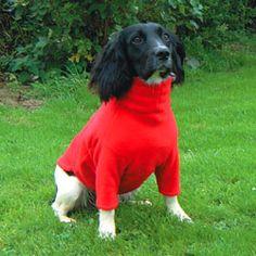 Polartec Fleece Dog Coats, Dog Jumpers, Summer Suits, T-Shirts, Calf Coats Fleece Dog Coat, Dog Suit, Dog Jumpers, Pet Fashion, Summer Suits, Jack Russell Terrier, Dog Coats, Pet Clothes, Best Dogs