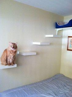 25 IKEA Hacks That Your Cat Will Love | ComfyDwelling.com #IKEA #hacks #cat