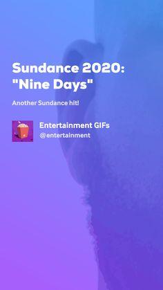 "Sundance ""Nine Days"" by Entertainment GIFs Movie Gifs, Weather, Entertaining, Movies, Films, Cinema, Movie, Film, Weather Crafts"