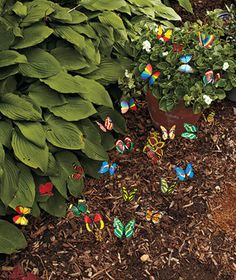 Grace your yard, garden or flowerbed with a rainbow of beautiful creatures with a Set of 24 Butterfly Stakes. You can also use them indoors to add a lovely look to potted plants. You get a wide array of colors and designs.