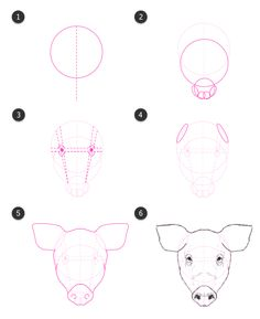 How To Draw A Pig Face : Sketch, Ideas, Sketch,