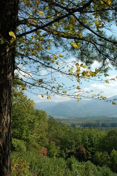 The Smoky Mountains are one of the most beautiful place to be!