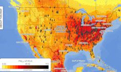 This Incredibly Detailed Map Shows Global Air Pollution Down to the Neighborhood Level - CityLab