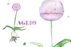 Botany / Gardening - Giorgia Bressan Illustration
