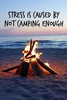 Tall Pines Campground & River Adventures Camping at Tall Pines ~ Camping Humor, Camping Glamping, Camping Life, Camping Ideas, Funny Camping, Camping Style, Camping Theme, Camping Crafts, Outdoor Fun