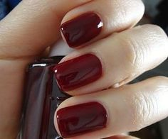 Beautiful oxblood shades for Autumn