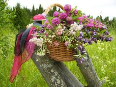Basket of wildflowers on the rustic old fence Meadow Flowers, Flowers Nature, Wild Flowers, Beautiful Flowers, Champs, Vides, Bloom Blossom, Spring Sign, Rustic Charm