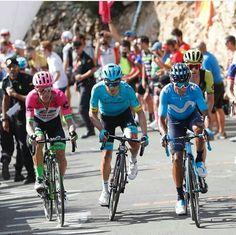 en esta imagen se observan tres grandes ciclistas colombianos que son  Nairo Quintana   Rigoberto Uran Miguel Angel Lopez Miguel Angel, Pro Cycling, Iron Man, Bicycle, Photography, Instagram, Photos, Biking, Sports