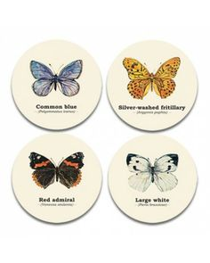 Ecology - Butterfly Coasters - £7.99