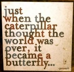 Caterpillar to a butterfly. Just when the caterpillar thought the world was over it became a butterfly. - One day I shall overcome and fly away.