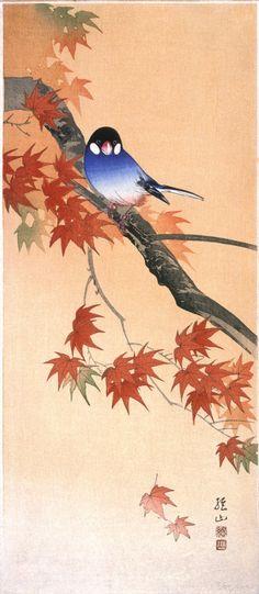 Bluebird on Autumn Maple Branch Itō Sōzan (Japan, born 1884) 20th century Prints; woodcuts Color woodblock print Image: 14 15/16 x 6 7/16 (38 x 16.4 cm); Paper: 15 1/16 x 6 5/8 in. (38.3 x 16.8 cm) Gift of Mr. and Mrs. Felix Juda (M.73.37.541) Japanese Art