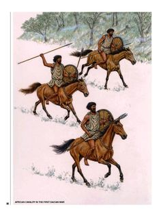 The Numidians 300 BC–AD 300 MEN-AT-ARMS Punic Wars, Osprey Publishing, Imperial Army, Carthage, Ancient Rome, North Africa, Warfare, Moose Art, History