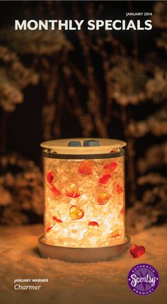 January's warmer of the month has you sweetheart in mind. www.bammer.scentsy.us