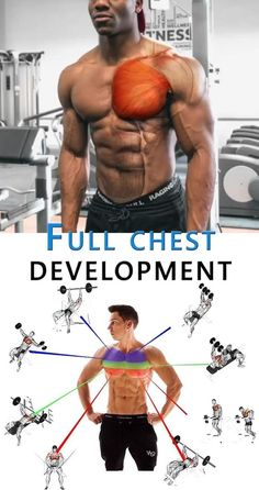 Full Chest Development 👇 CHEST Development Full lifestyle is part of Chest workouts - Gym Workout Chart, Gym Workout Videos, Fun Workouts, Workout Fitness, Fitness Diet, Fitness Goals, Fitness Motivation, Workout Plans, Yoga Fitness