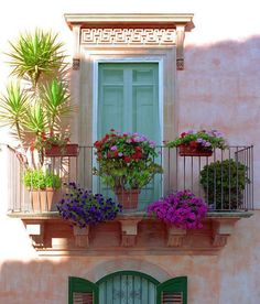 Use your balcony to garden a little...