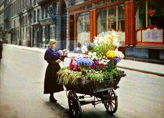 #5 Flower Street Vendor, Paris, 1914