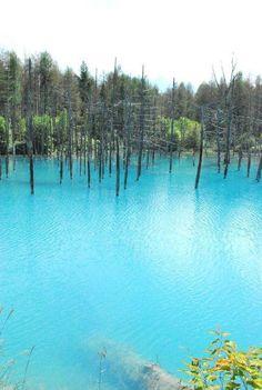 hokkaido japan  美瑛町の青い池に行きたい