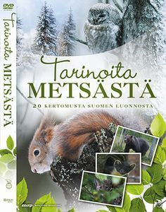 Tarinoita metsästä materiaali Biology For Kids, Science Biology, Science For Kids, Science And Nature, Art And Hobby, Environmental Education, Early Childhood Education, Walking In Nature, Happy People
