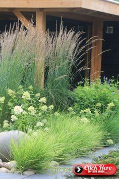 hydrangea garden care I love ornamental grasses! Garden Cottage, Garden Beds, Prairie Garden, Garden Sofa, Garden Seating, Green Garden, Shade Garden, Green Plants, Herbs Garden