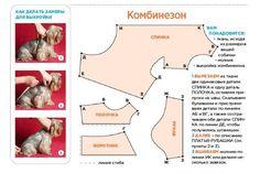 для собак | Записи в рубрике для собак | Дневник людмила_дугина : LiveInternet - Российский Сервис Онлайн-Дневников