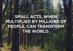 """""""Small acts, when multiplied by millions of people, can transform the world."""""""