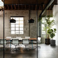 Plants warm up an industrial styled space
