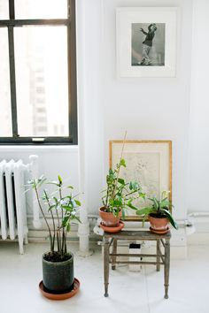 Vicente Wolf's Manhattan Living Room | Rue