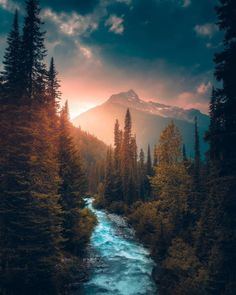Ideas for beautiful tree photography scenery god Beautiful World, Beautiful Places, Beautiful Pictures, Amazing Places, Landscape Photos, Landscape Photography, Photography Tips, Scenery Photography, Mountain Photography