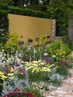 pretty planting.     Chelsea Flower Show 2011 Cleve West
