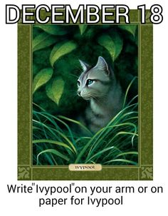 "Write ""Ivypool"" on your arm or on paper on #December_18 for #Ivypool."