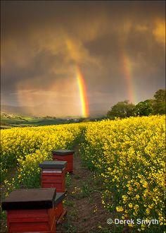 Newry, Armagh, Northern Ireland