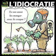 www.lescomptoirsdelabio.fr