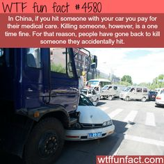 25 Facts Are so Full of WTF True facts that are very difficult to believe.True facts that are very difficult to believe. Wow Facts, Wtf Fun Facts, True Facts, Funny Facts, Random Facts, Crazy Facts, Random Stuff, The More You Know, Did You Know