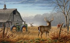 Old Barn and old tractor