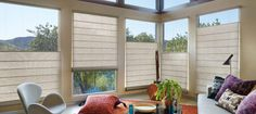 Concrete colored hunter Douglas shades