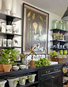 Stephanie Schur uses shelves as a creative way to display and organize vases, flowerpots, and gardening gloves at her flower shop in Santa Monica, CA.