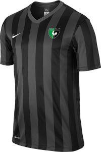 Nike Denizlispor 588411 Çubuklu Maç Forması