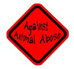 Against Animal Abuse