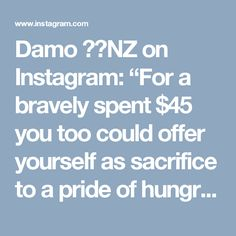 """Damo 🇳🇿NZ on Instagram: """"For a bravely spent $45 you too could offer yourself as sacrifice to a pride of hungry lions at the Orana Wildlife Park #christchurchnz…"""""""