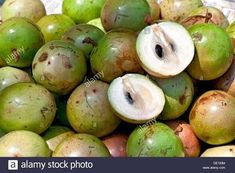 Star Apple - Green Exotic Fruit, Tropical Fruits, Fruit And Veg, Fruits And Veggies, Star Apple, Fruit List, Strange Fruit, Fruits Images, Golden Leaves