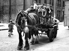 vintage everyday: Children riding on horse and cart, ca. Framed Prints, Canvas Prints, Art Prints, Horse Cart, Black And White Dog, Historical Pictures, Farm Animals, Art Reproductions, Mammals