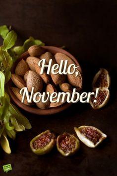 Hello, November!