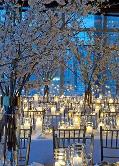 Bianchi fiori di #ciliegio e lume di #candela